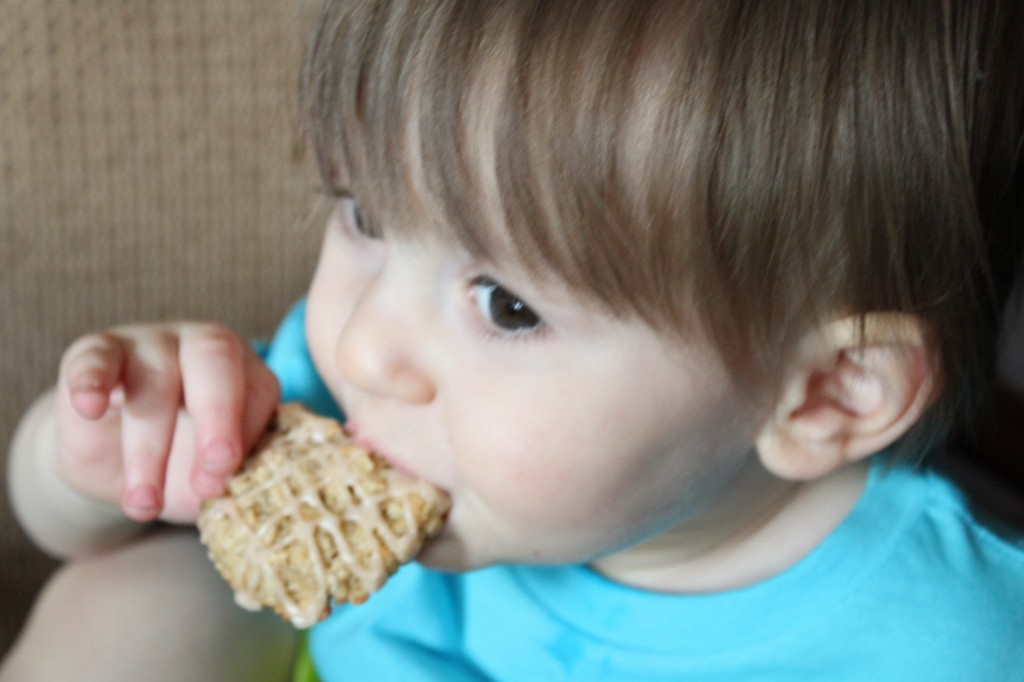 Charlie snacking on a banana oatmeal cookie
