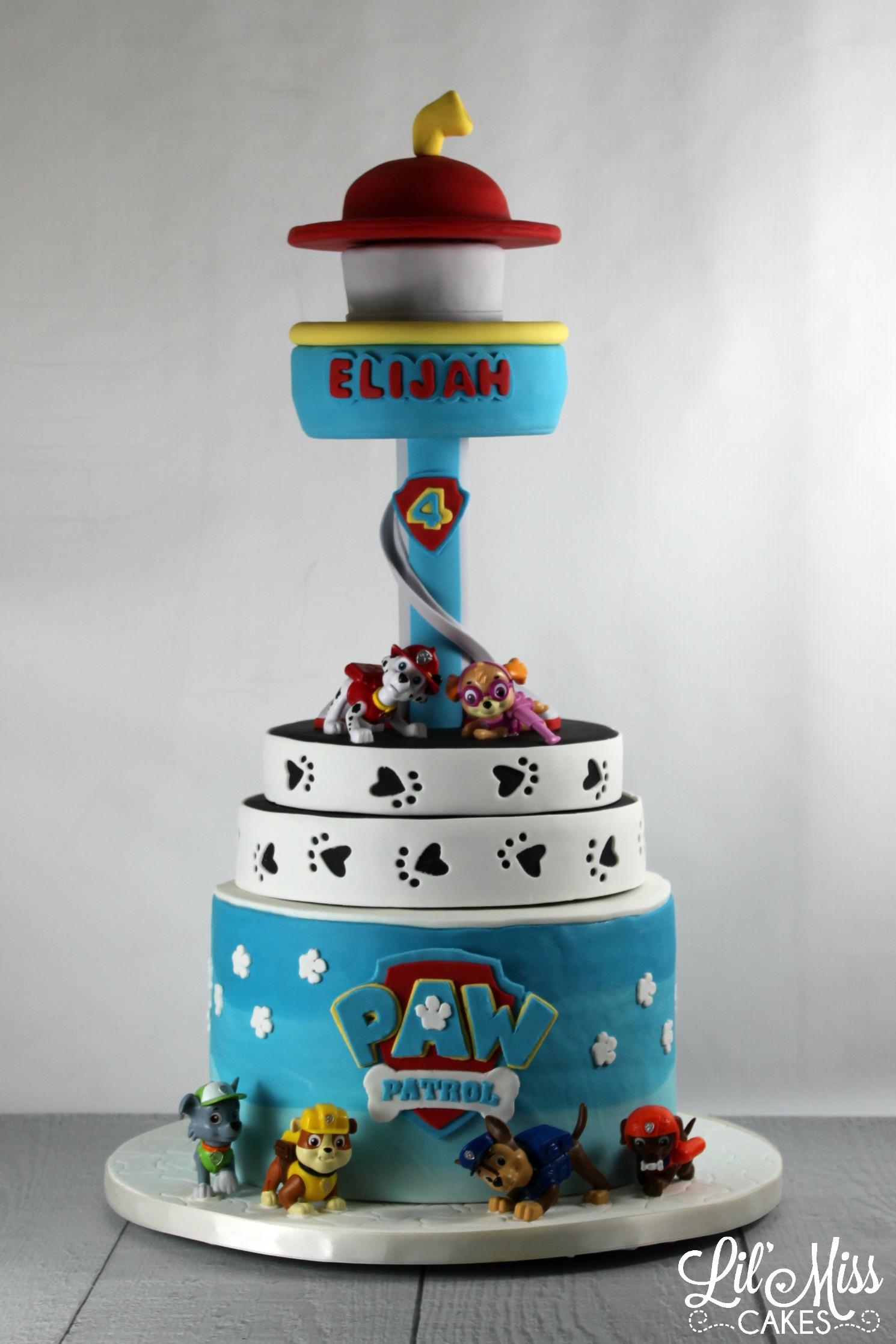 Cake Design Paw Patrol